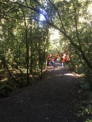 LandSAR volunteers rescuing some water
