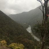 The Mohaka river