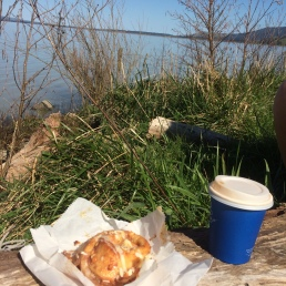 Snack at Lake Wairarapa